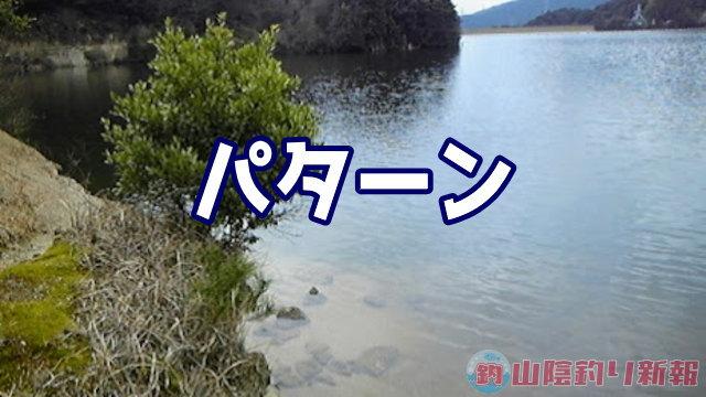 パタァァーンだよぉぉ(哲男風に)