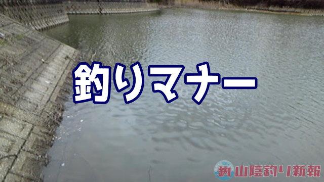 釣りとマナー m9( ・∀・)