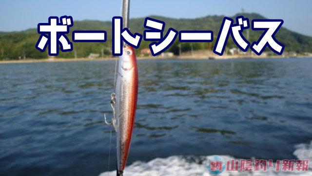 シーバスボート乗り合いGOGO☆