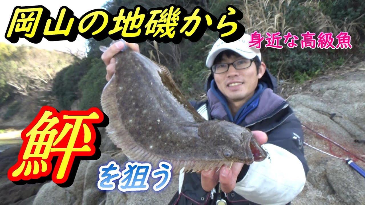 岡山の地磯から身近な高級魚