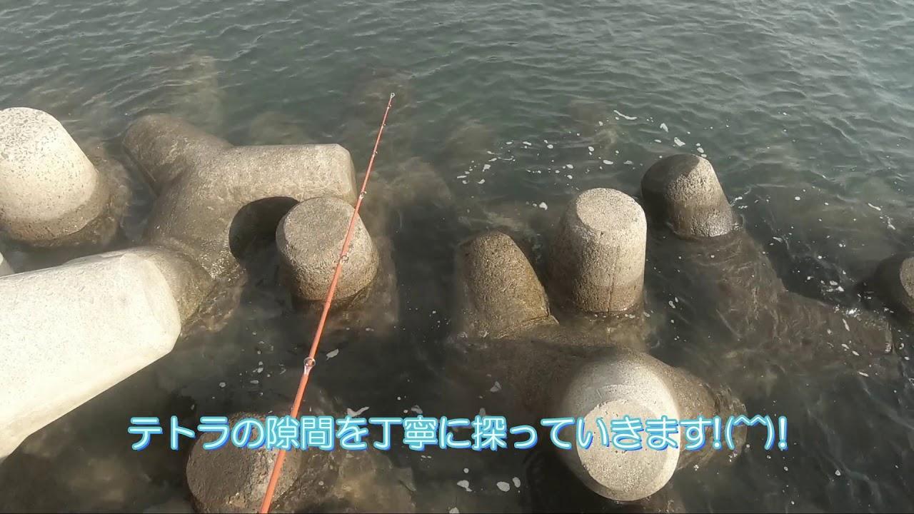『根魚釣り』岡山市・宝伝港2020.12.26