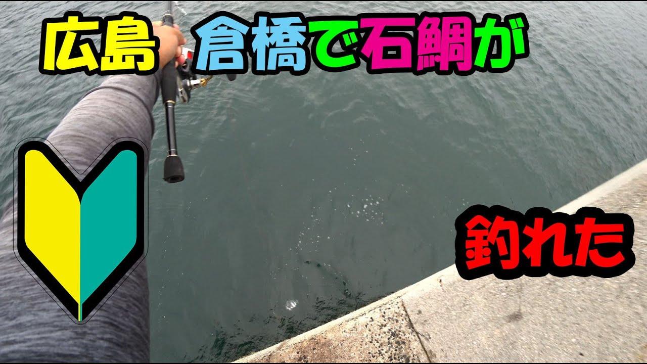 地元広島の倉橋にてかぶせ釣りで石鯛釣れた!I catch a black porgy at a thin line Striped beakfish