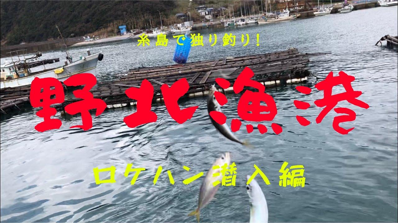 1月の野北漁港で独り釣り!】噂の人気スポットにロケハン潜入釣り!