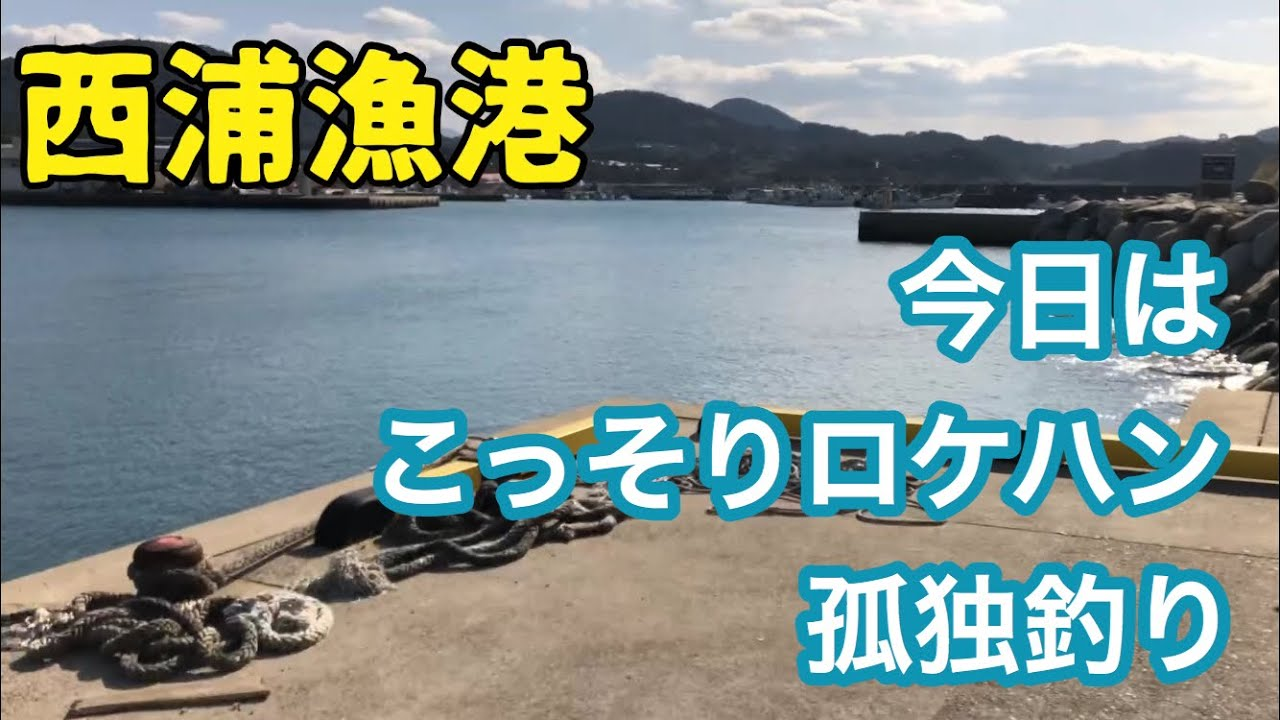 西浦漁港で独り釣り!人気高まる穴場スポットにロケハン潜入釣り!