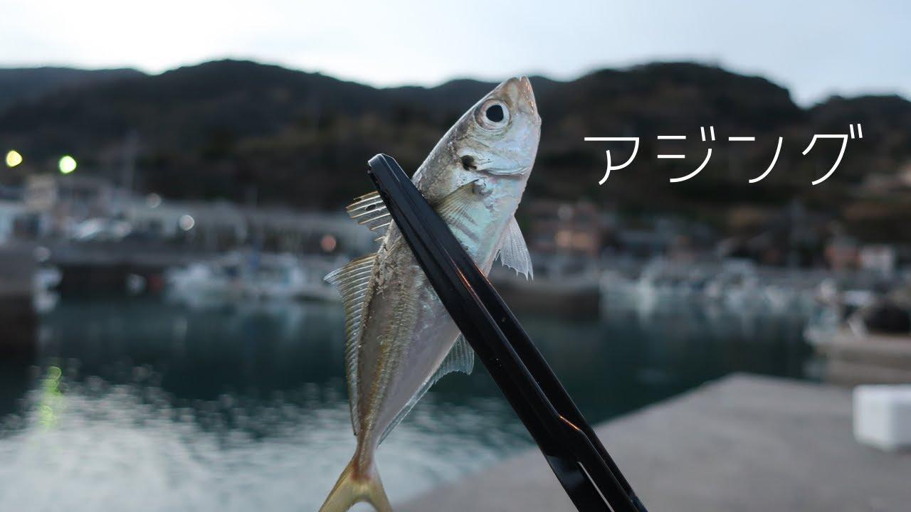 アジング【大分・釣り】