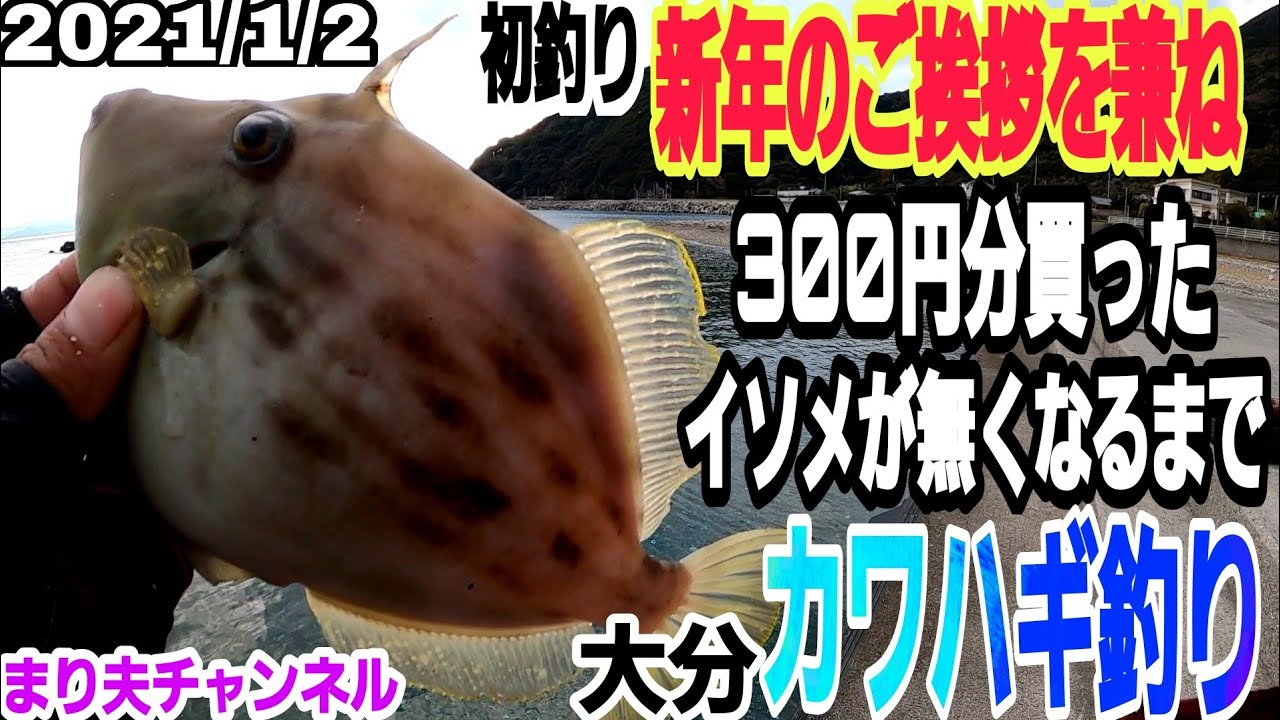 肝パンカワハギ求めて300円分買った餌がなくなるまで投げまくる