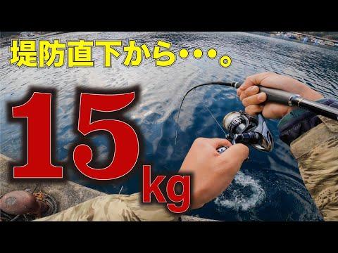 【死闘】大物が釣れる必殺釣法で堤防下から記録級モンスターが…!