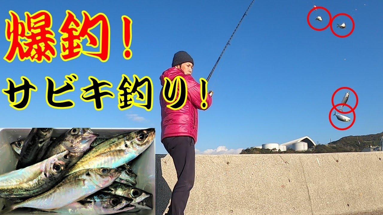 12月!堤防サビキ釣りでアジ爆釣!@大分 佐賀関