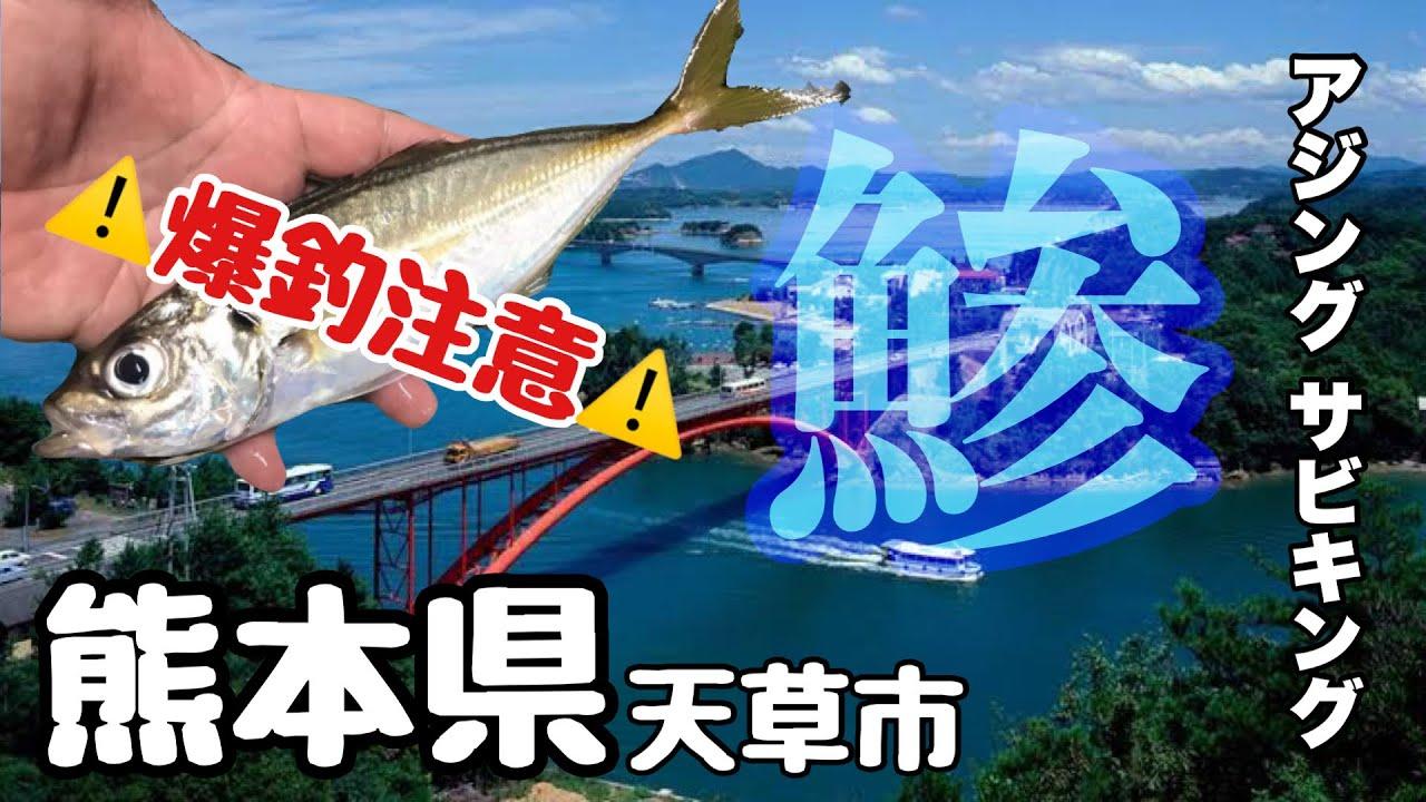 【天草】サビキ&アジングで無限にアジが釣れる!!