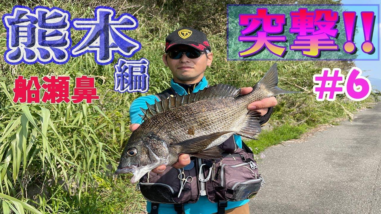 【釣り場紹介】船瀬鼻のノッコミチヌ。重量感のある春のノッコミチヌを釣る!