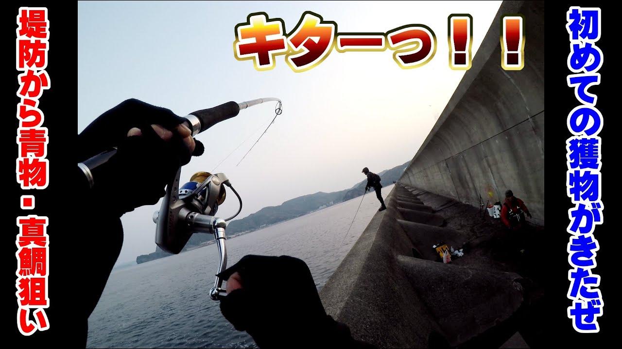 足場の高い堤防から、青物・真鯛・シーバスを狙ってみた!