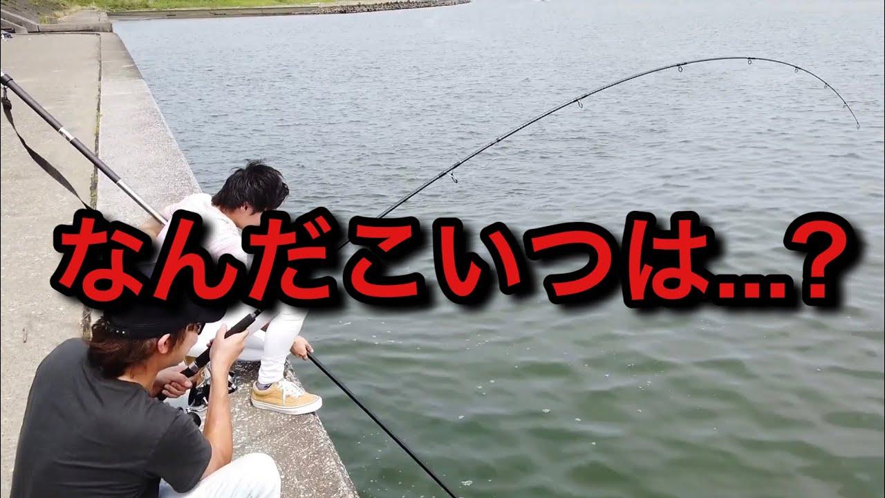 宮崎の港の水門で釣りしてたら、とんでもない大物が釣れた!?