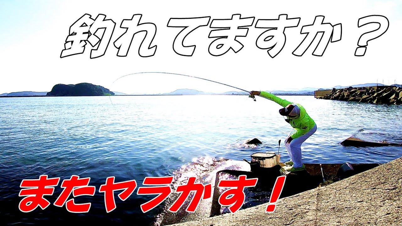 【宮崎釣り】ふかせ釣り