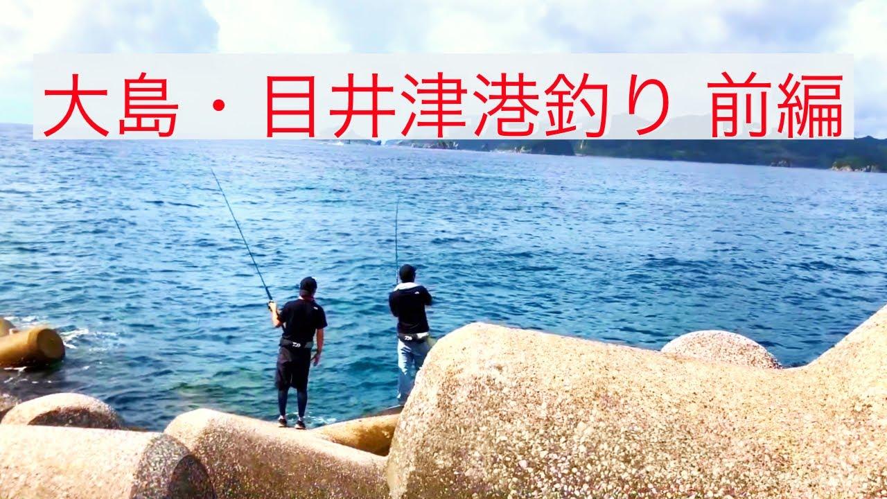 大島・目井津港釣り