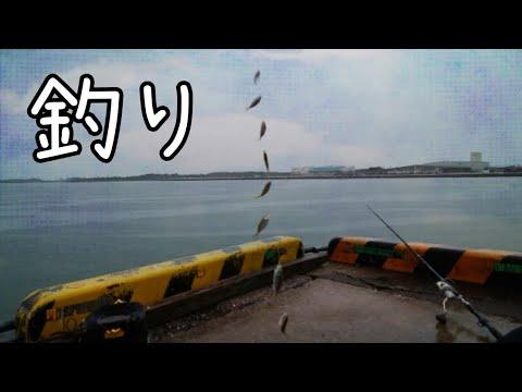 宮崎県の港をハシゴして釣りをした結果!宮崎港→油津港→鵜戸港→宮崎港