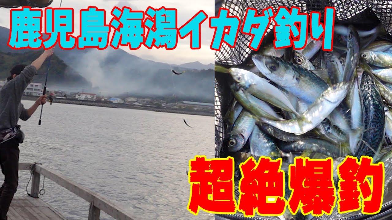 錦江湾 海潟筏釣りで大爆釣!!2021年初釣り!!