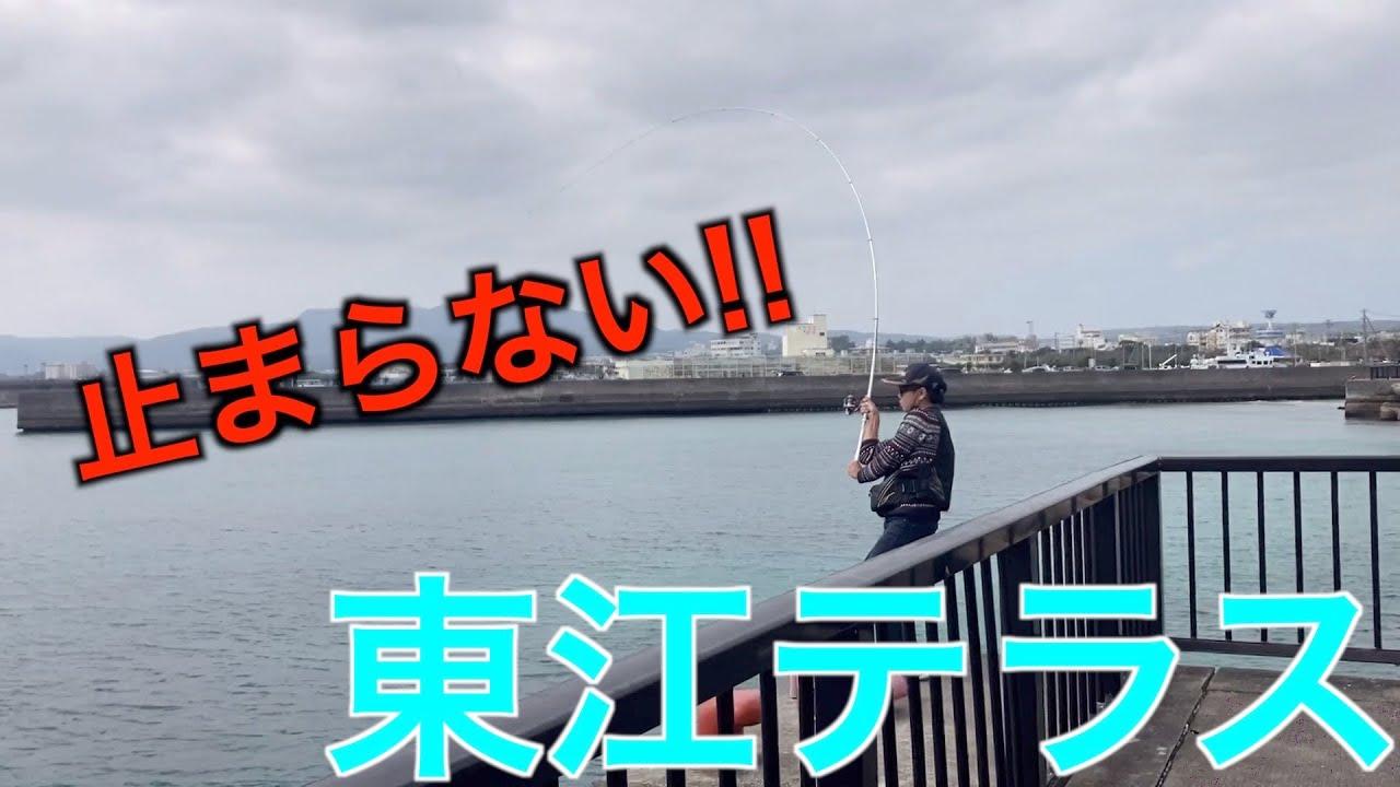 大型魚3連発!ラインが止まらない‼︎【フカセ釣り】