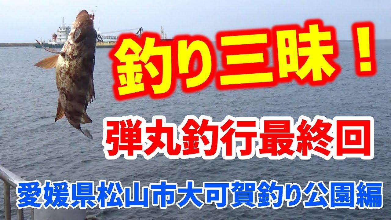 弾丸釣行 愛媛県松山市編