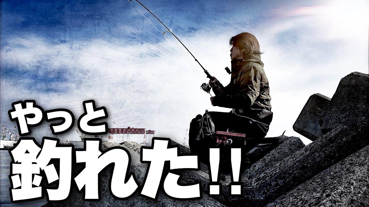 エサとルアーでまったりと堤防釣りしてたらまさかの事態とレア魚が釣れた‼️