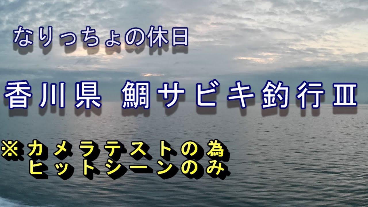 鯛サビキ・チョクリ釣り2021年03月06日