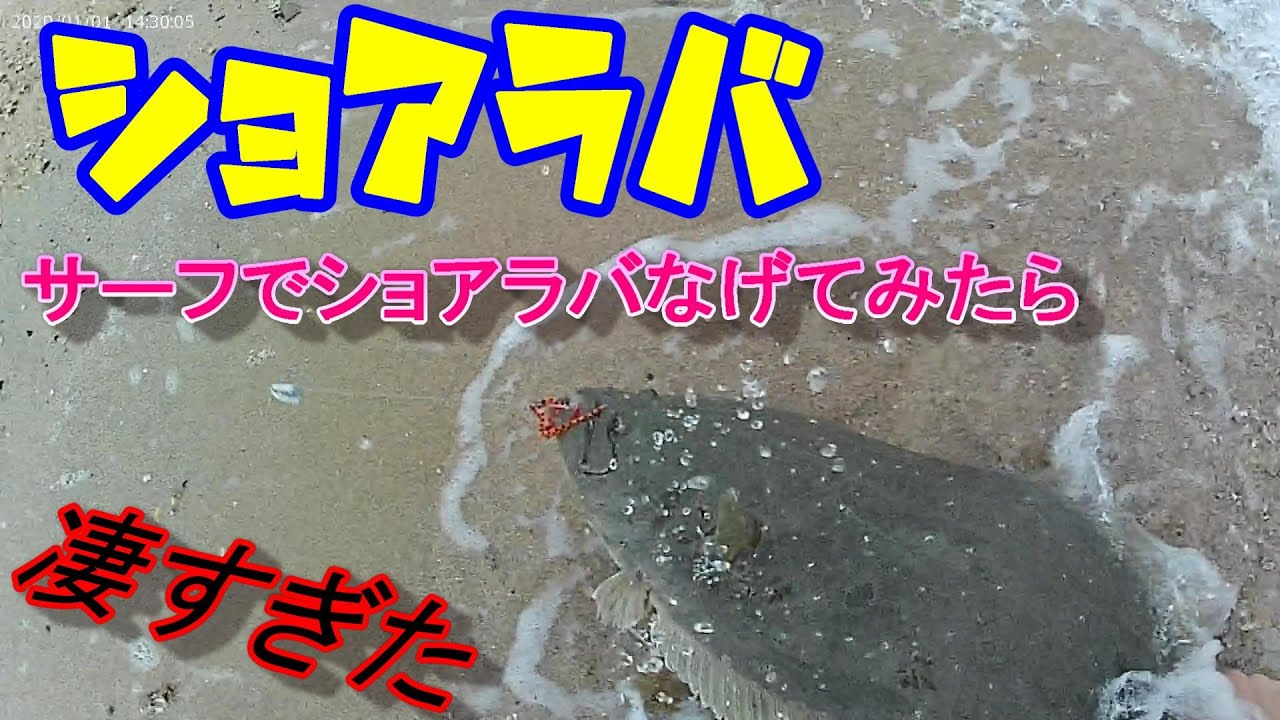 【ヒラメ釣り】瀬戸内 座布団ヒラメに真鯛に凄すぎた