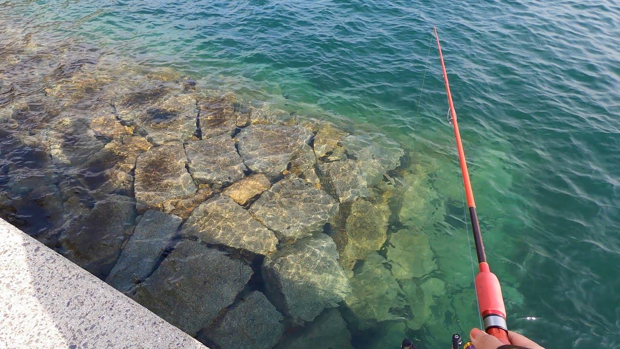 島に渡って穴釣りをしてみた!