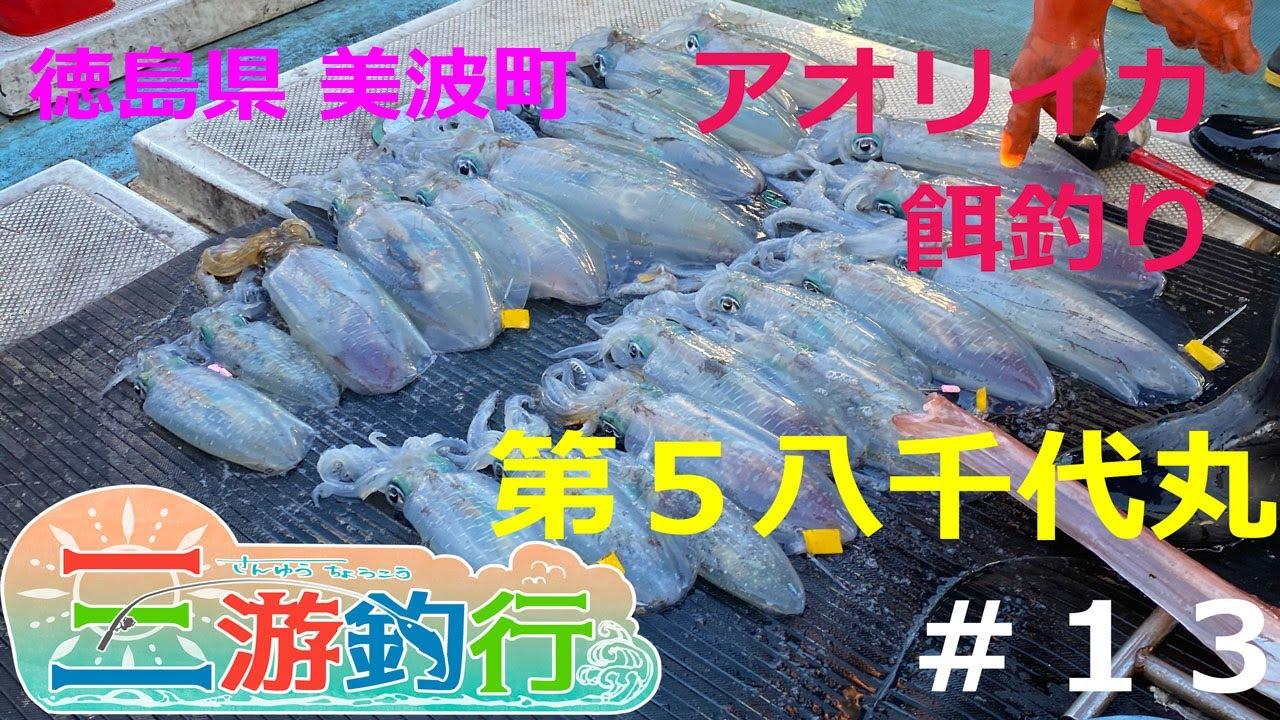 徳島県 美波町 八千代丸でアオリイカ餌釣りをやる!!