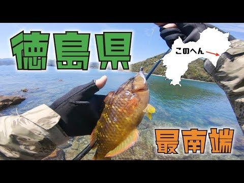 徳島県最南端の漁港でライトゲーム