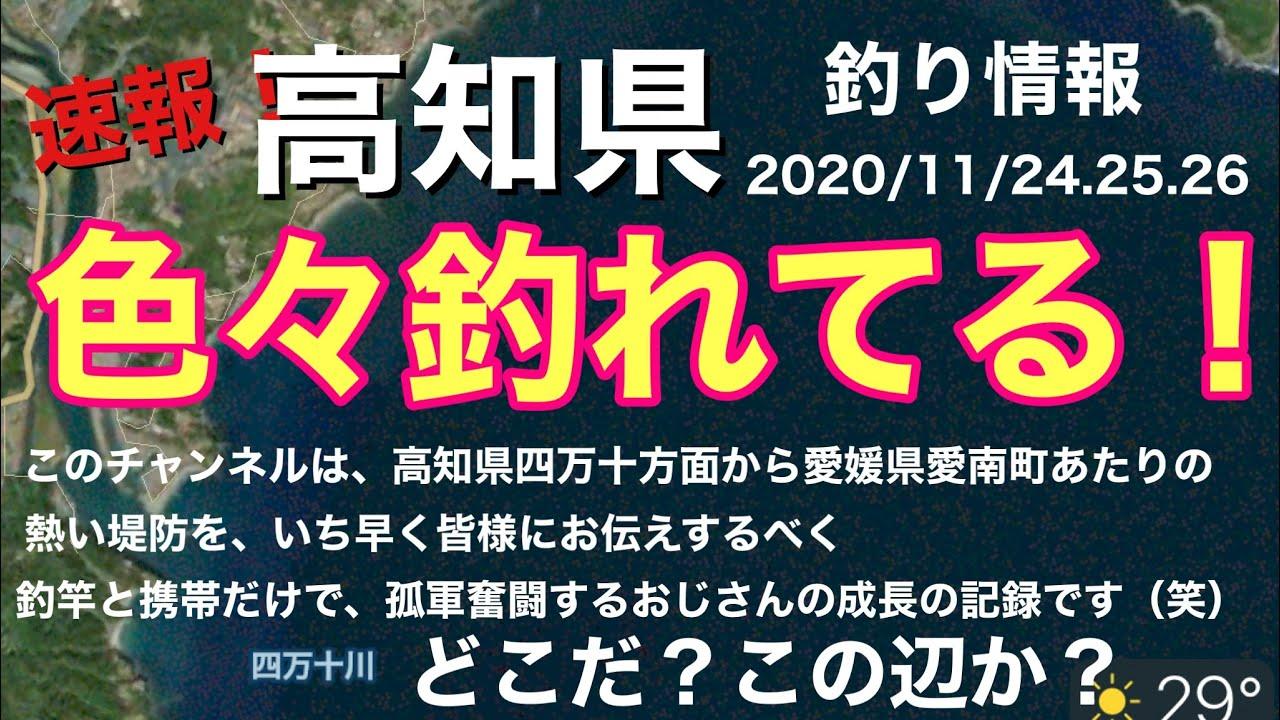 【釣り情報】ぼちぼち青物のシーズンですかね!