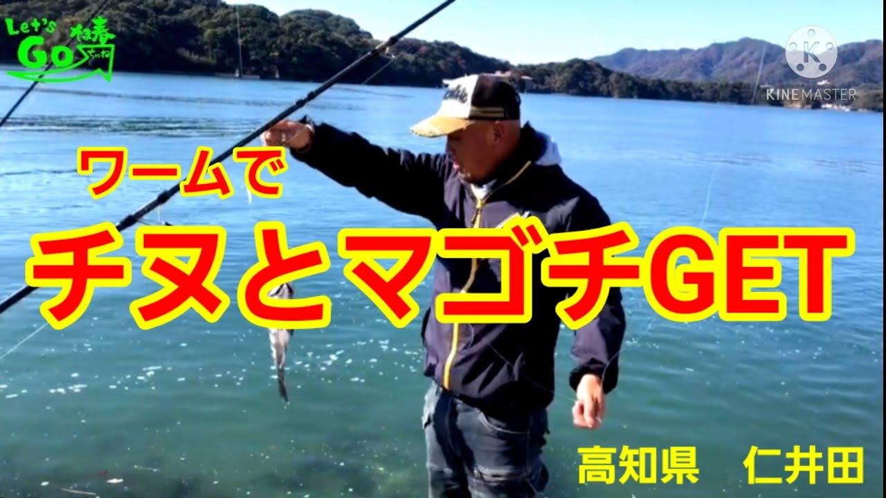 ワーム縛りで釣りに行くw 高知県 仁井田