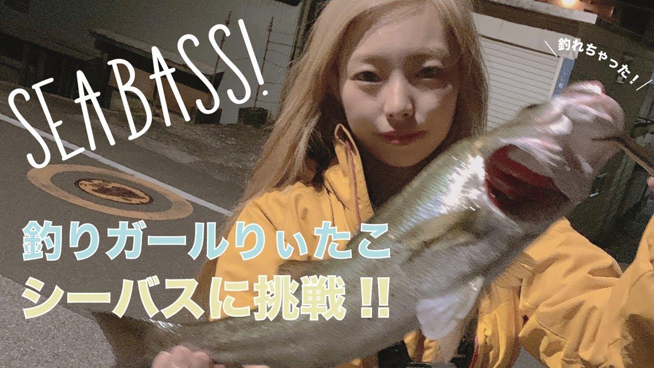 【シーバス釣り】高知の川で釣りしてみた♪