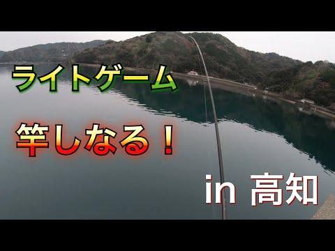 隠れ名所の湾内でエサ釣り&ライトゲーム!