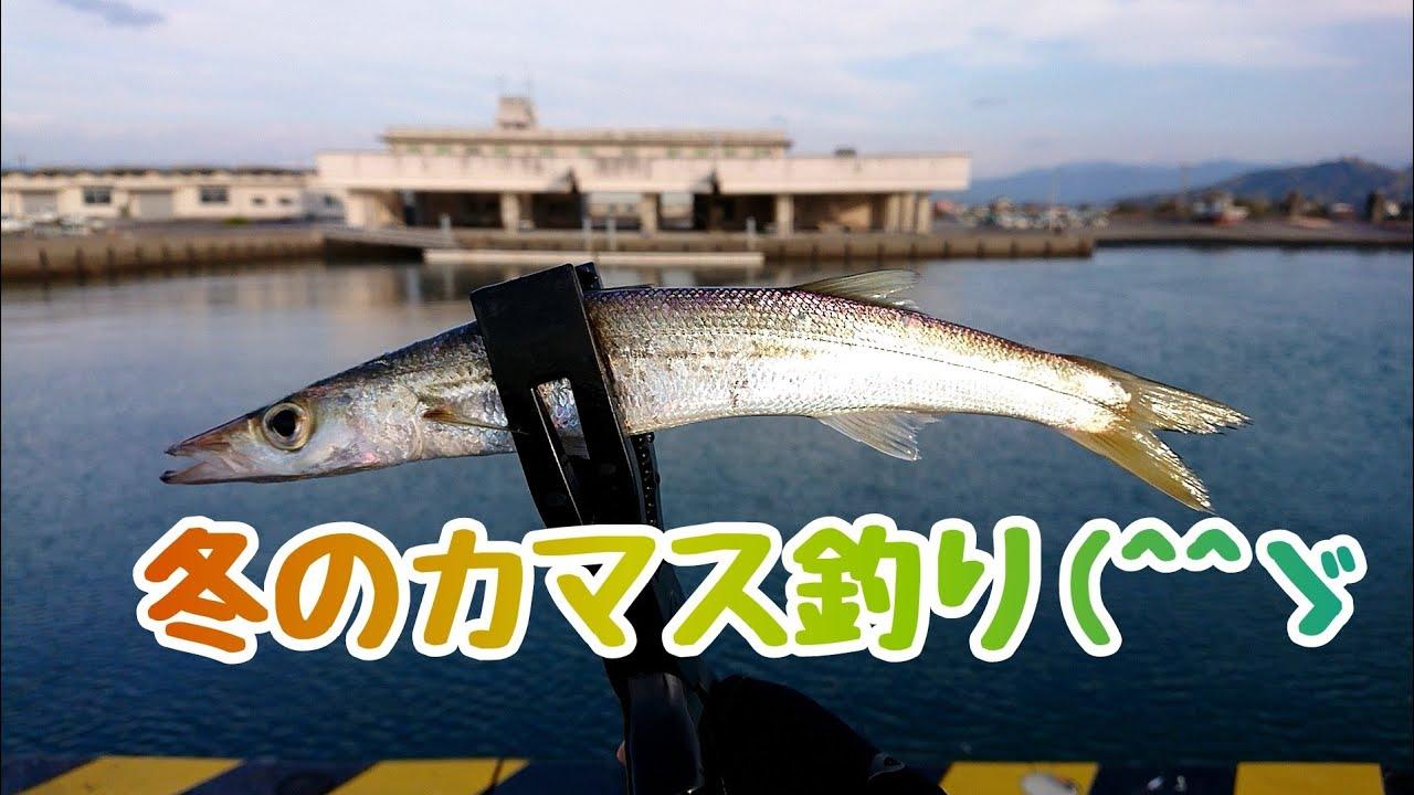 漁港内での『カマス狙い』(香南市吉川漁港)