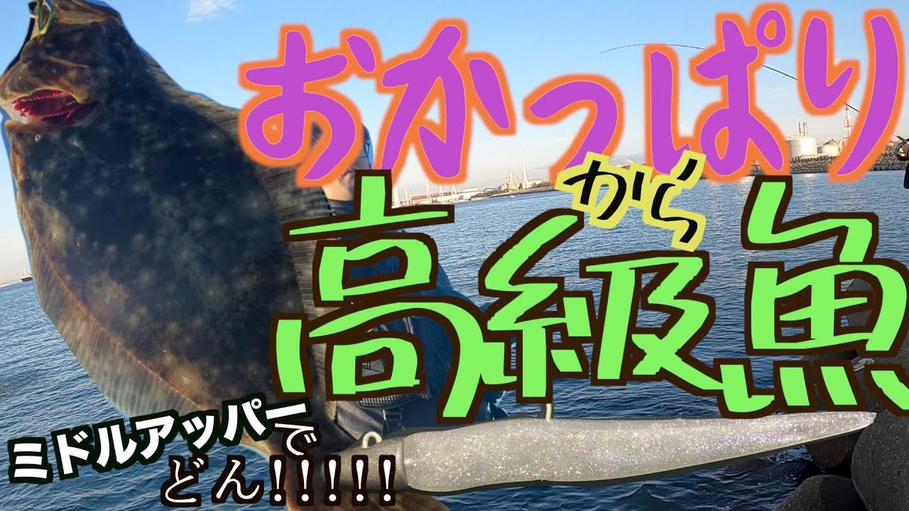 【ヒラメ釣り】ミドルアッパーはフラットフィッシュの大好物!加古川