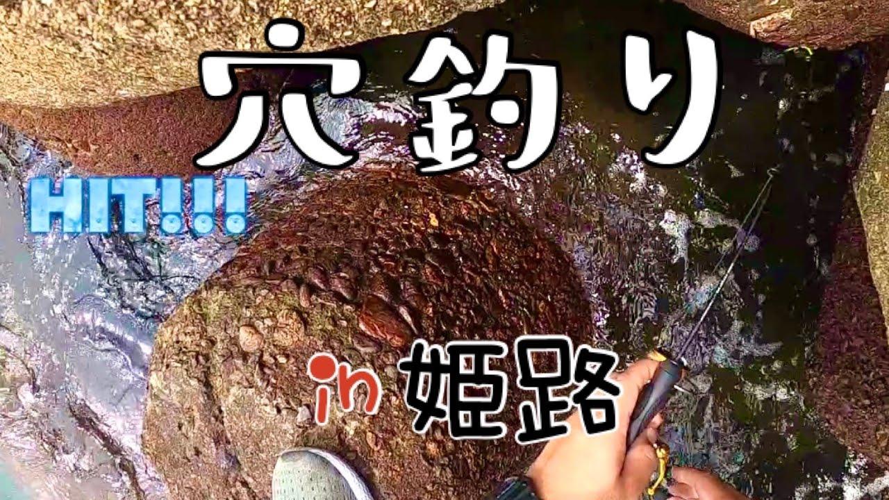 中島埠頭近くのお気に入りのテトラ帯で久しぶりの穴釣り!in姫路
