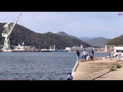 【ポイント】相生 野瀬埠頭 サビキ釣り