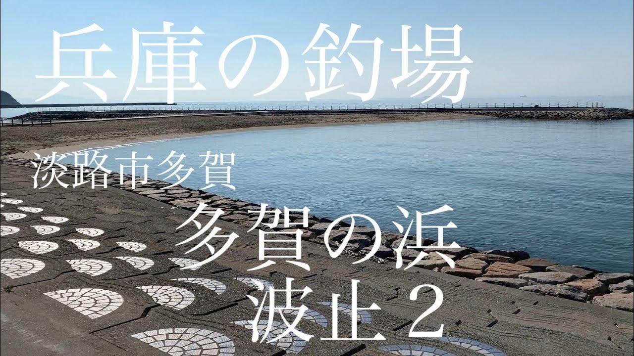 【釣場紹介】多賀の浜 波止