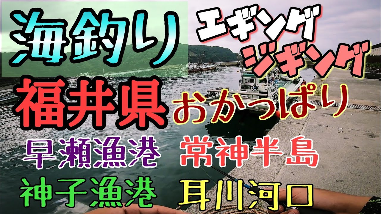 常神半島、早瀬、耳川河口の福井県おかっぱりコース!