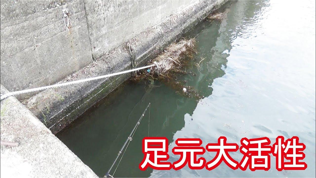 堤防であの釣した結果まさかの…