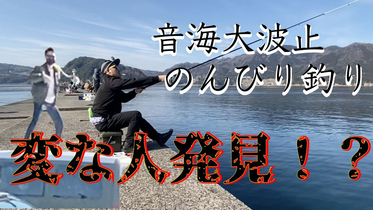 高浜町「音海大波止」ヤリイカ、根魚、青物・・・