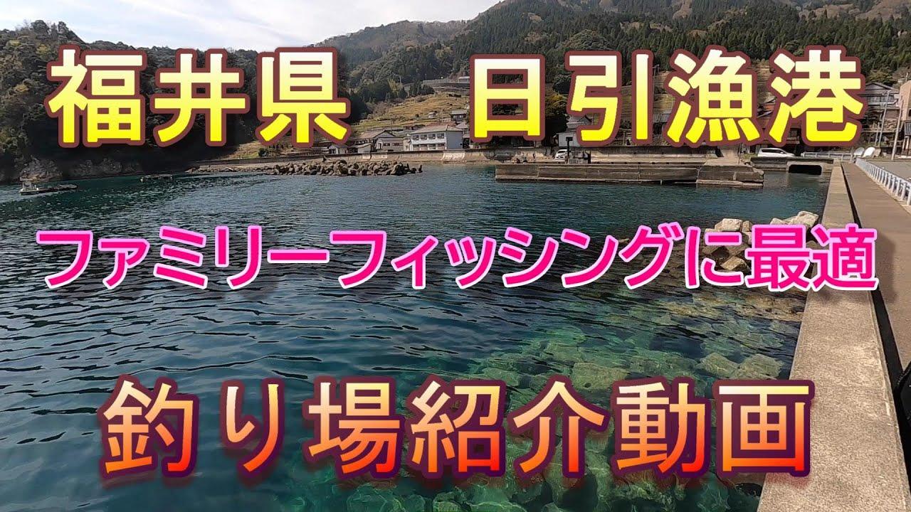 日引漁港ファミリーフィッシングに最適❗