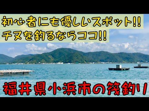 【かかり釣り】小浜市でチヌ祭り!!筏釣りをするならココ行かなきゃ損!?