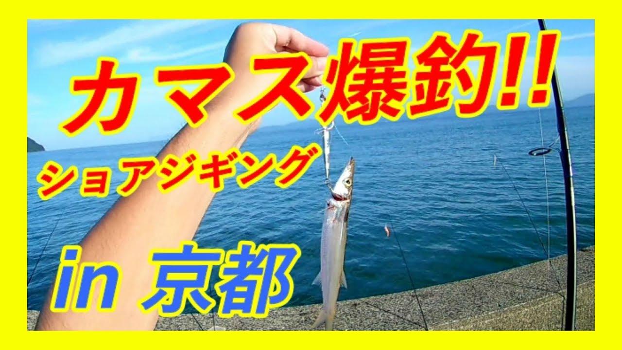京都の堤防で秋のショアジギングは初心者でも釣れまくる!