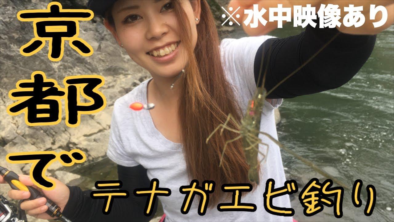 テナガエビの釣り方や仕掛けを紹介【宇治川】