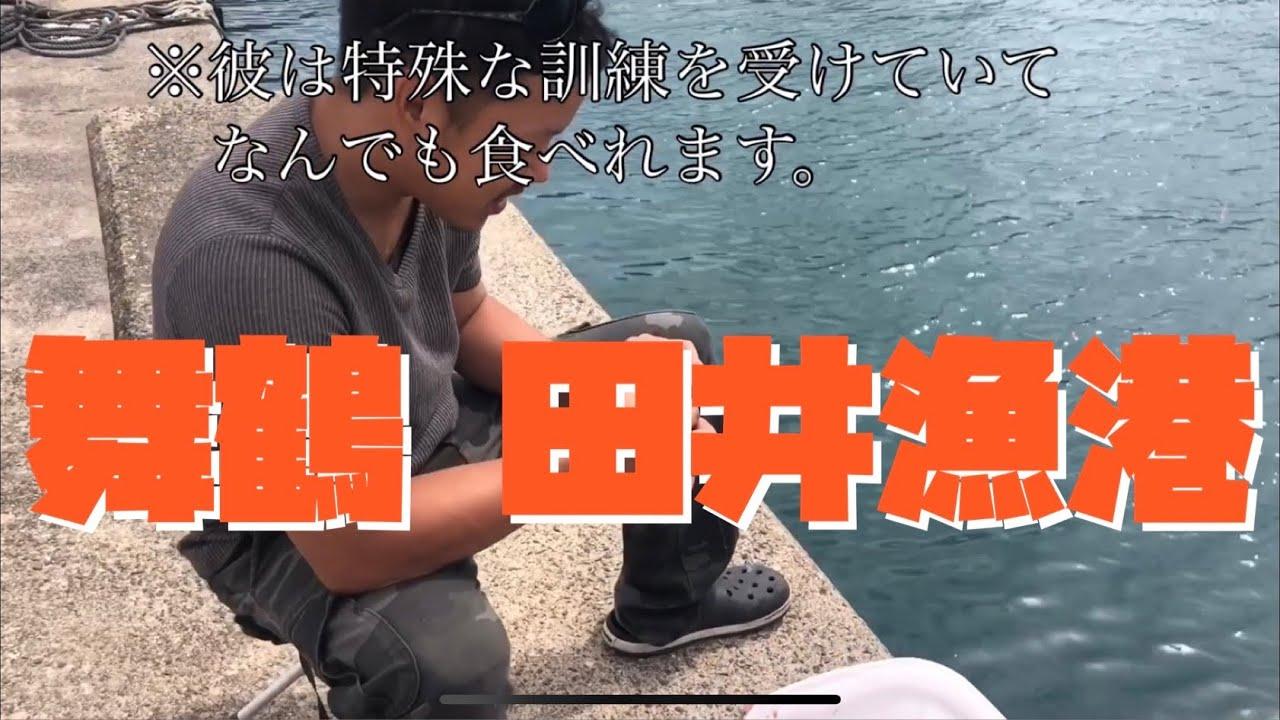 舞鶴 田井漁港 釣り遠征