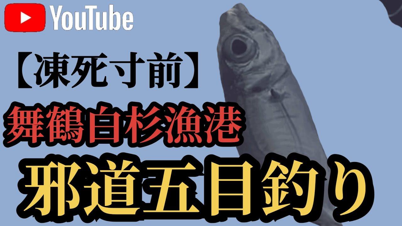 舞鶴の白杉漁港にて邪道五目釣りで釣れたものは!?