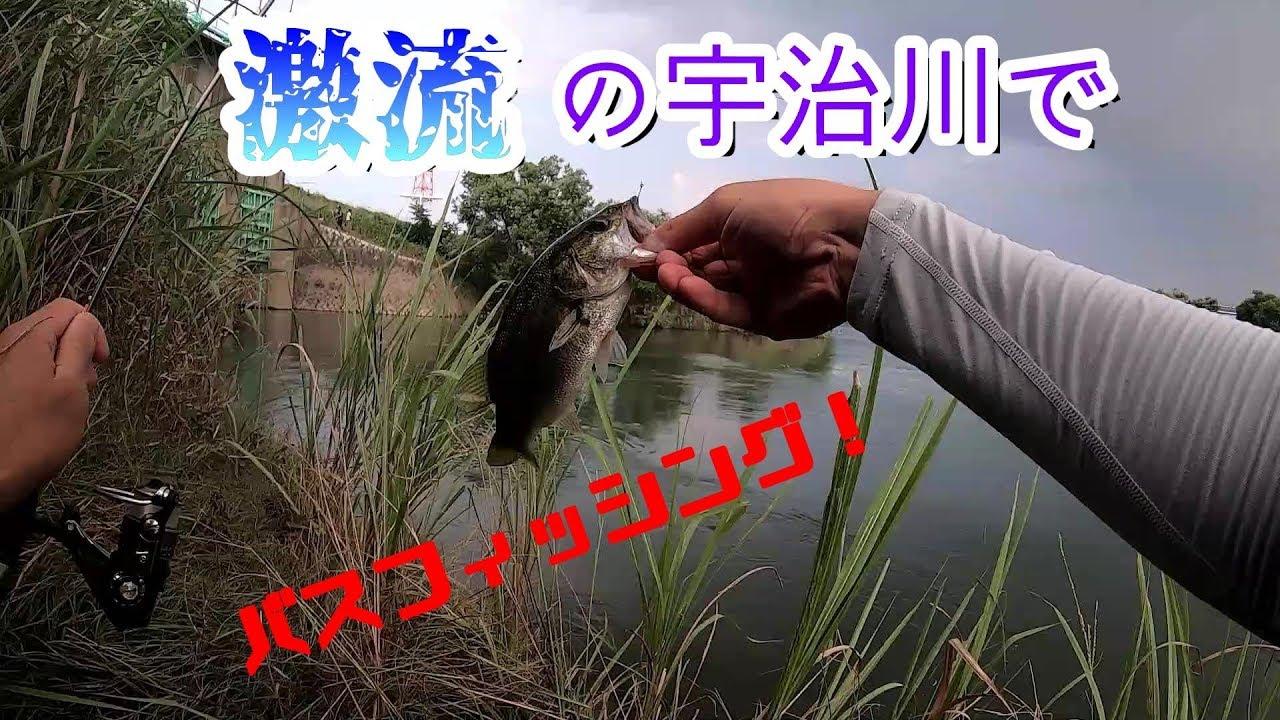 【バス釣り】宇治川に挑む!【激流】