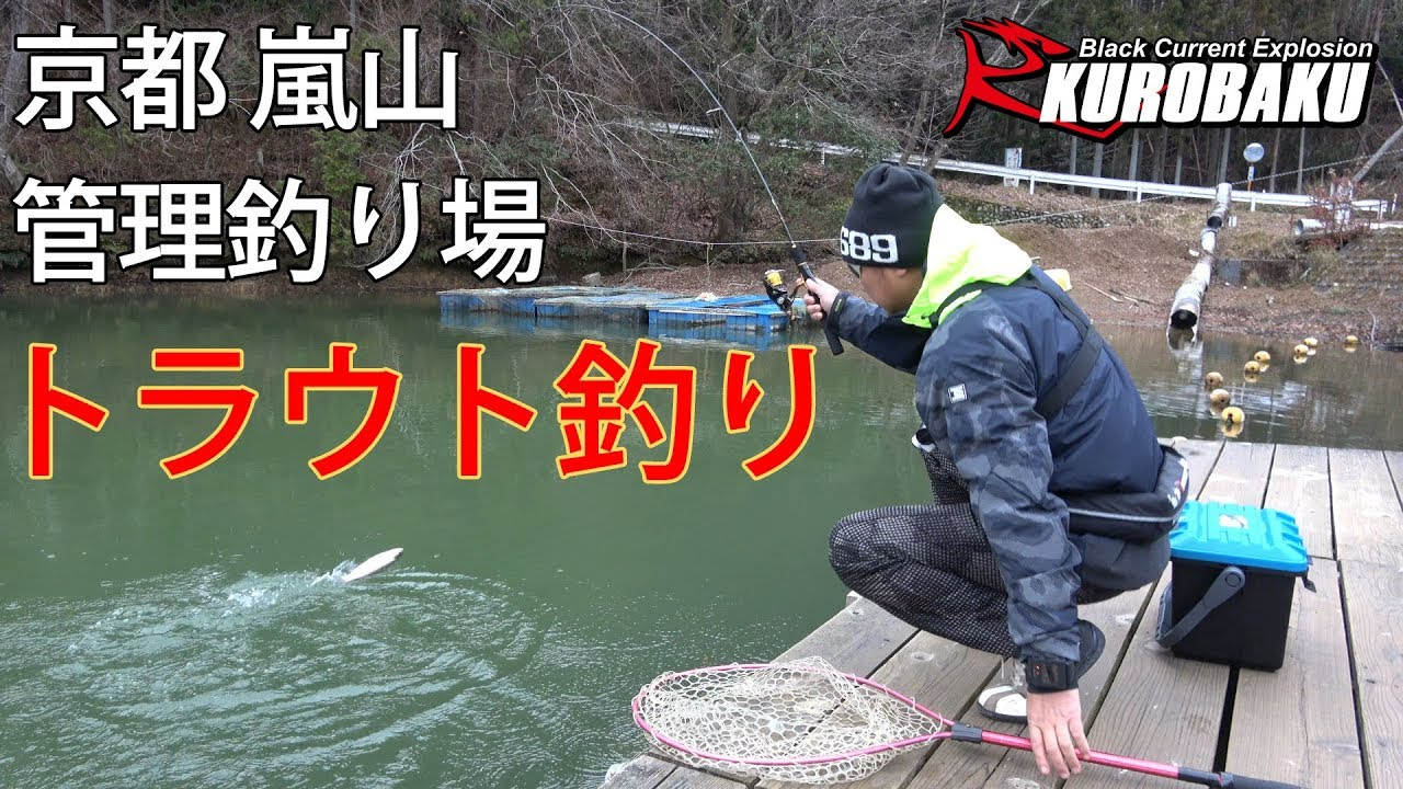 トラウト釣り 京都 嵐山