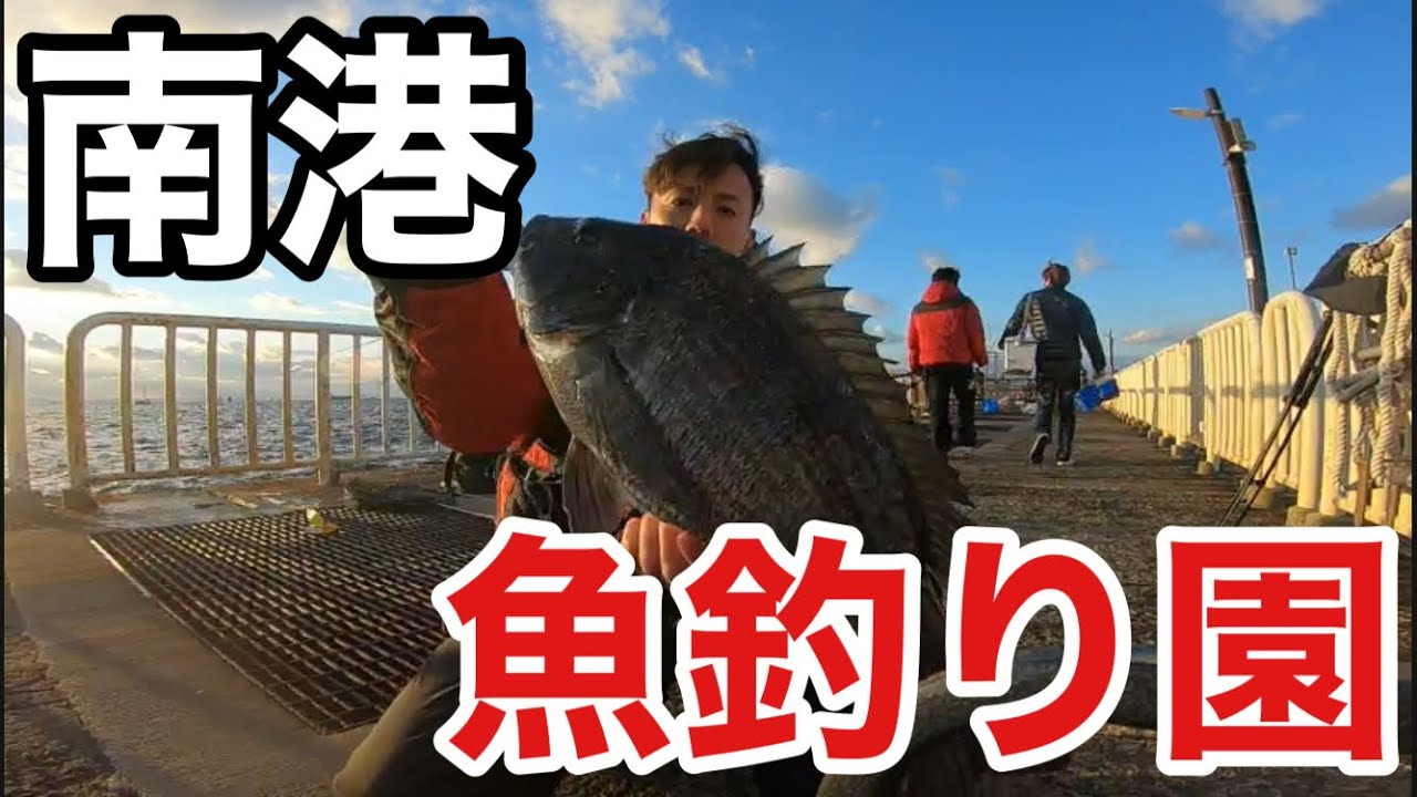 【南港魚釣り園護岸】近所の海釣り公園で釣り