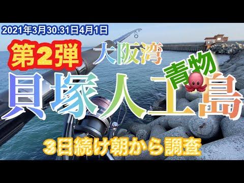 大阪湾貝塚人工島『3日続けて朝から調査』青物&タコ。2021.3.30〜